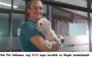 Piet Hellemans1Neen