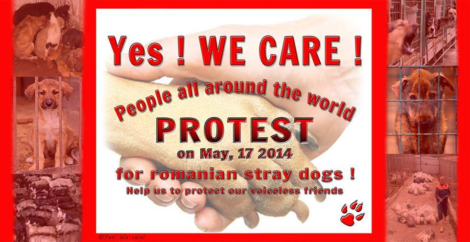 yes we care