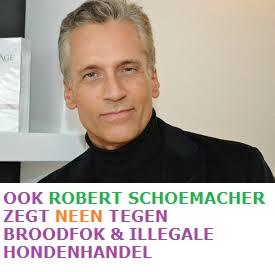 robert schu2